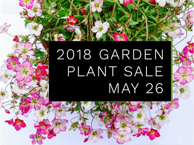 pink flowers with 2018 garden plant sale may 26
